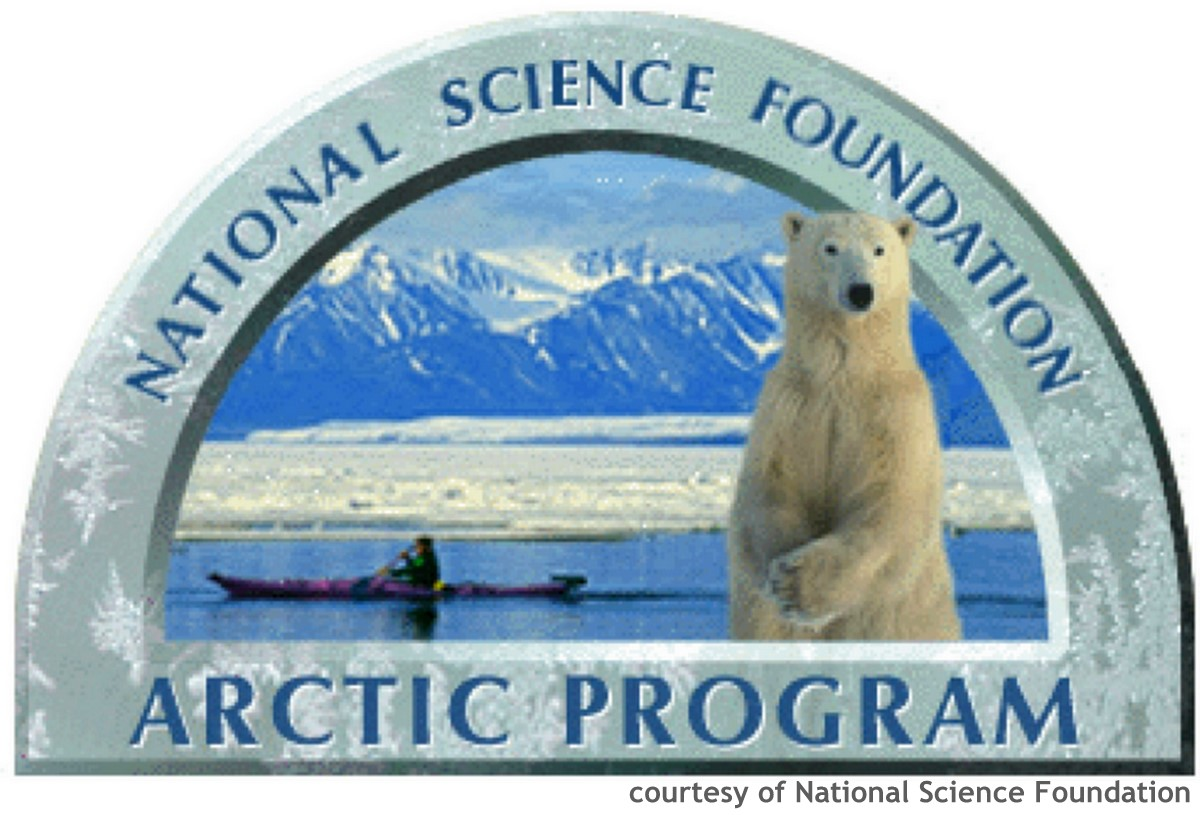 Logo of the NSF's Arctic Program