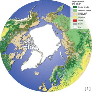 Map of the Arctic, its vegetation and land cover
