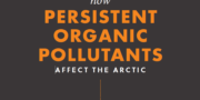 Persistent Organic Pollutants in the Arctic – Infographic