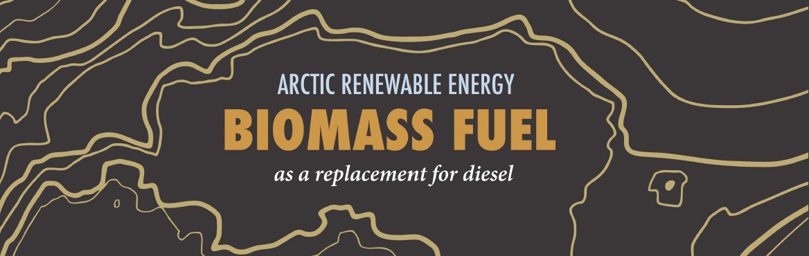 Infographic header on Biomass fuels in the Arctic.