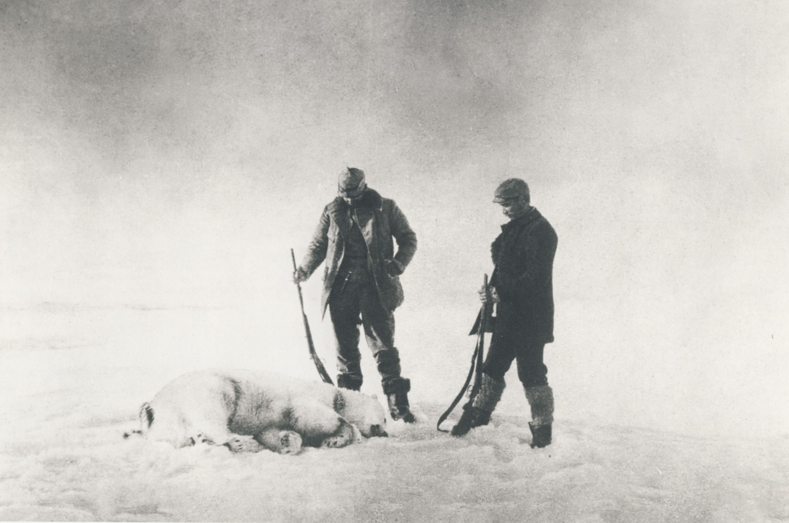 Two men with rifles standing over a dead polar bear.
