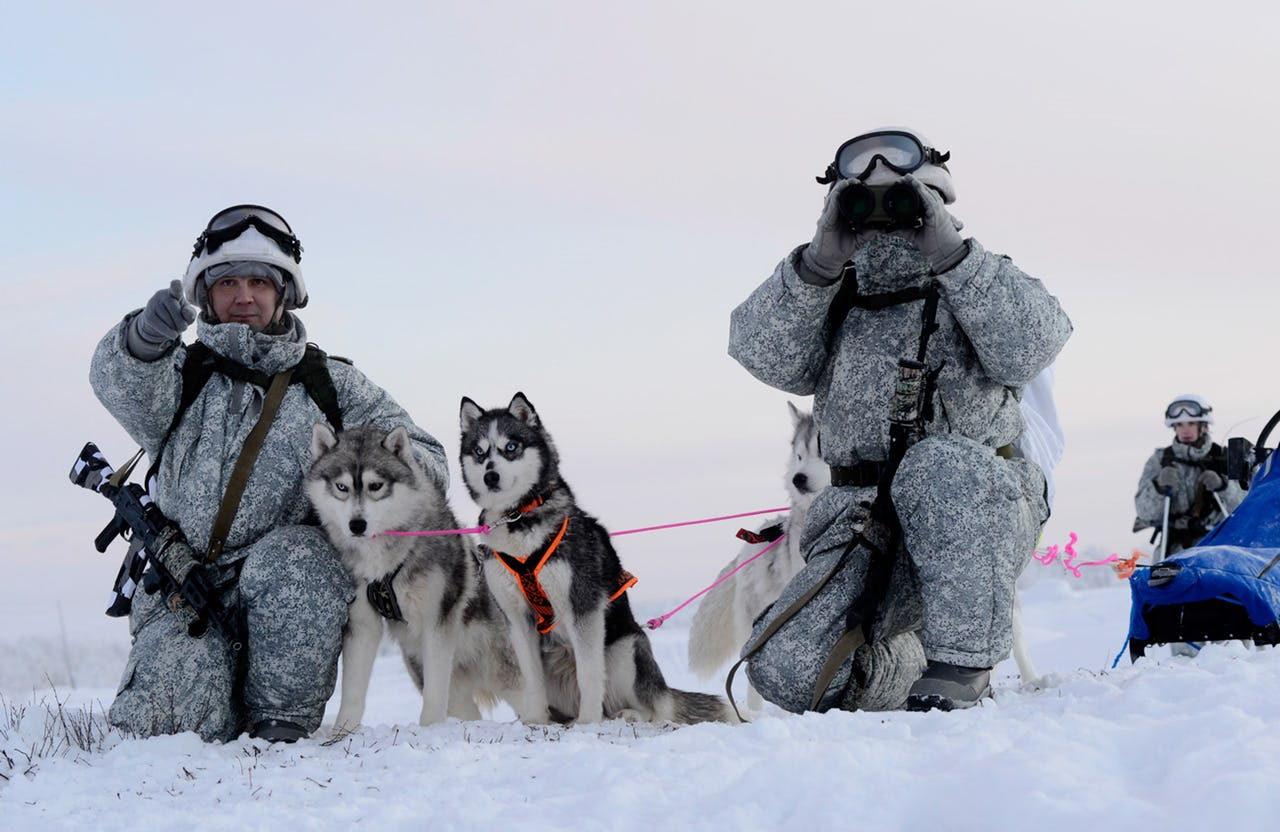 Russian Special Forces soldiers in winter camouflage pose with rifles next to three husky dog sleds in a snowy, white, Arctic landscape. One soldier points as the other looks through his binoculars.