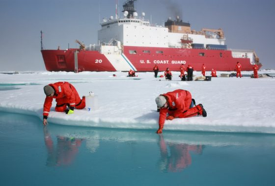 Field Guide to Arctic Sea Ice